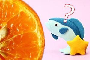みかん味の魚が養殖できる! 愛媛で養殖した みかん味の魚『みかんブリ』