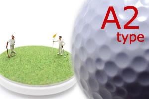 4スタンス理論!A2タイプのプロゴルファーでチェック!